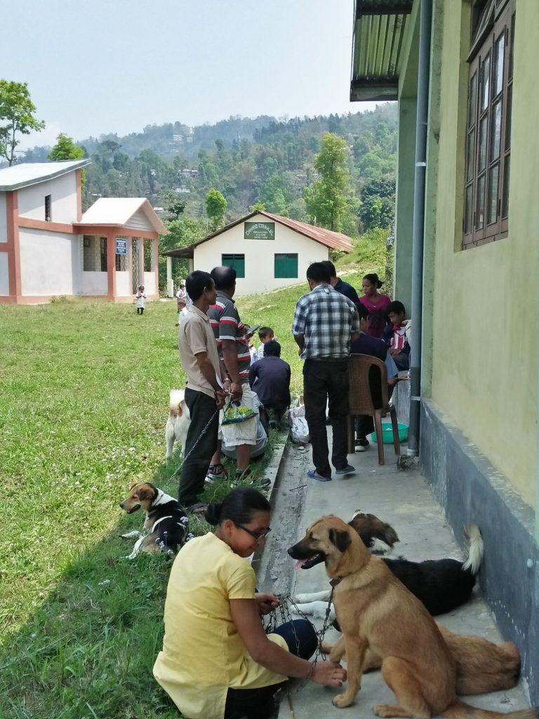 Owners waiting outside for their pets' anti-rabies vaccination and treatment